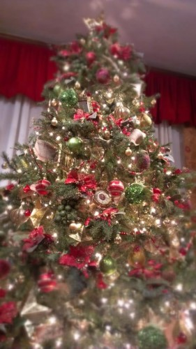 Photo Sunday – The Christmas Tree