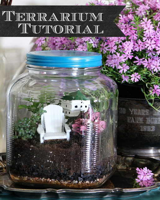 Terrarium-Tutorial