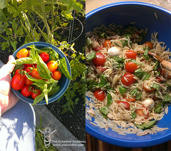 From Garden to Table