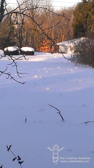Photo Sunday: Snow Rollers