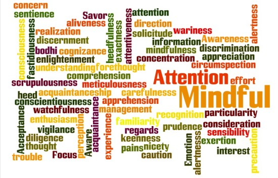 Word of the Year 2015 - Mindful