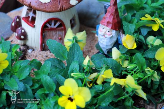 Gnomes in the fairy garden vicki o 39 dell - Petitti garden center strongsville ...