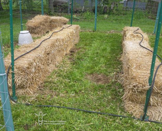 drip irrigation for straw bale garden