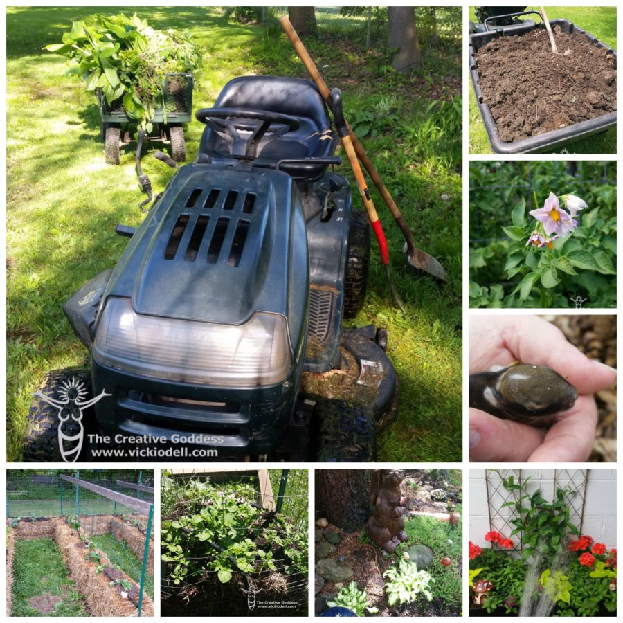 garden tractor, the creative goddess, living seasonally