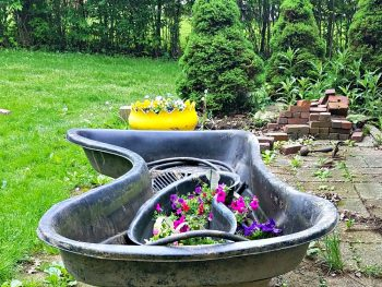Gardening, pond, water feature, flowers, patio,