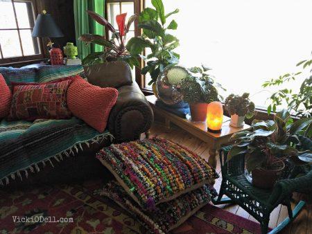 Healthy Houseplants, low light, ohio,