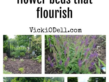 Flower Beds that Flourish Flower Bed with Bio Flora