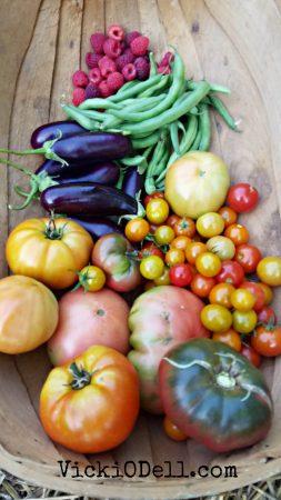 garden harvest 2018 - tomatoes, green beans, cherry tomatoes, eggplant