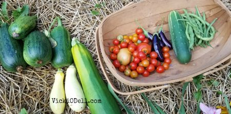 garden harvest 2018 - yellow squash, zucchini, cherry tomatoes, eggplant